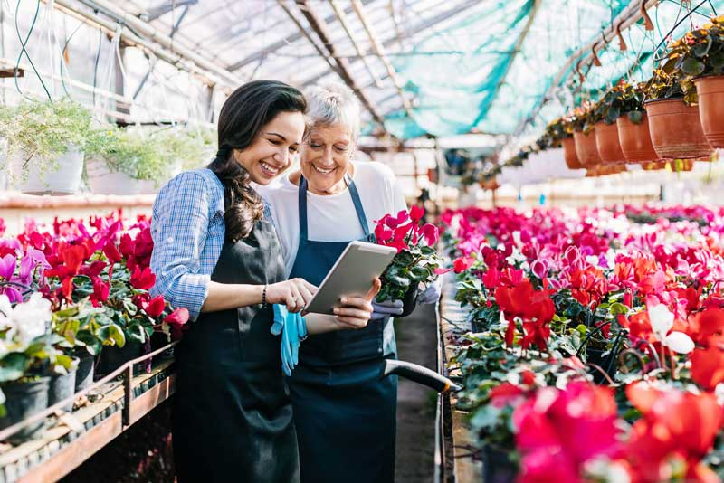 Two women working in a greenhouse filled with beautiful flowers